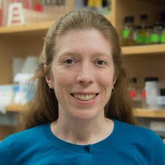 Prof. Dr. Katherine Henzler-Wildman